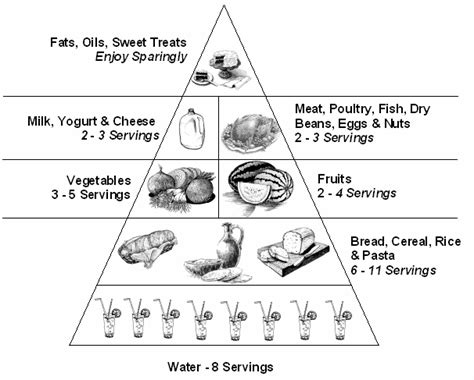 coloring pages food guide pyramid food pyramid for kids coloring page