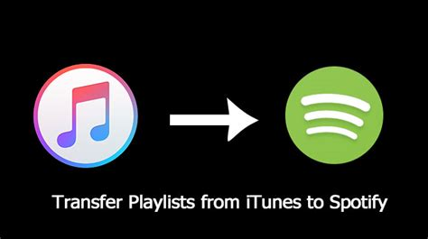 how to move spotify music to itunes how to move spotify music to itunes transfer playlists