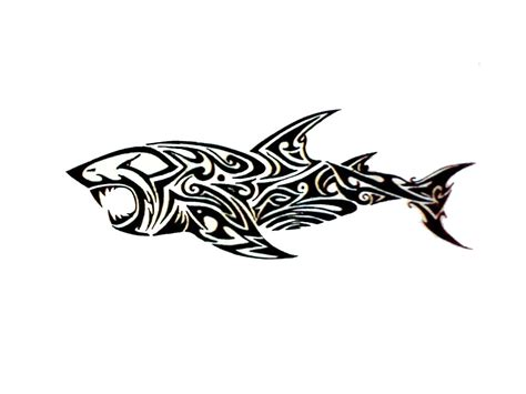 15 awesome tribal shark tattoos only tribal