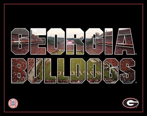 dawg house uga 43 best images about dawg house on pinterest logos football and college football