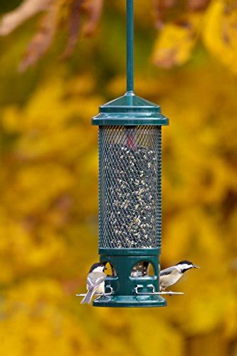 brome squirrel buster legacy wild bird feeder farm