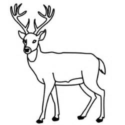 How To Draw A Deer Step By Sketch Coloring Page sketch template
