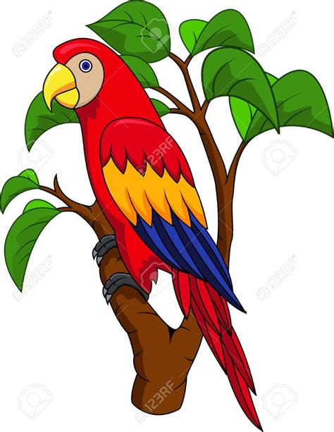 cartoon cockatiel best parrot clipart 16714 clipartion com