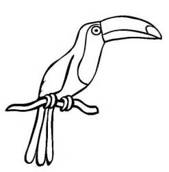 Toucan drawing of a toucan coloring page