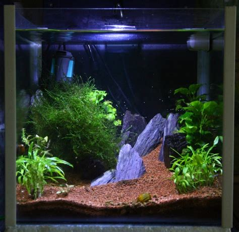 Aquascape Nano by Aquascaping Nano Cu Sequa
