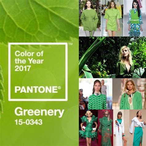 pantone 2017 color of the year greenery 15 0343 greenery is the color of 2017 according to pantone the