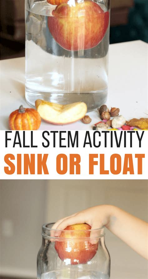 sink or float experiment fall sink or float science experiment
