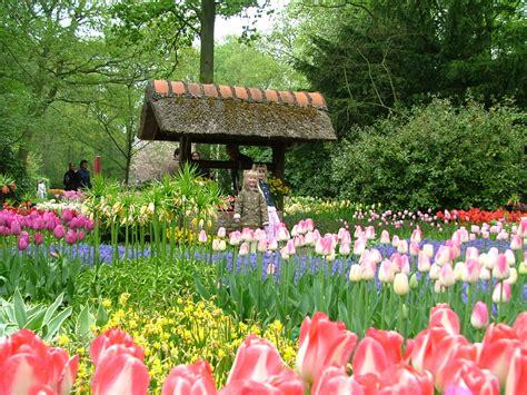 Dalat Flower Gardens Flower Gardens In Dalat Vietnam Garden City Flowers
