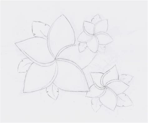 7 Sketches Hawaii by Hawaii Flower Drawing Www Imgkid The Image Kid Has It