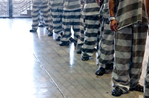 El Paso County Criminal Search Inmates In El Paso Jails