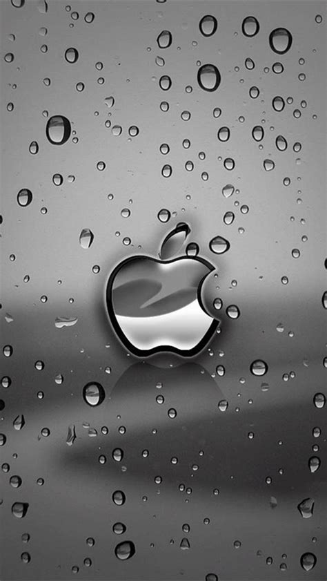 wallpaper for iphone 5 rain apple rain iphone 5 backgrounds hd