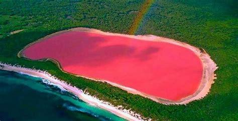 pink lake australia experience the natural phenomenon of western australia s