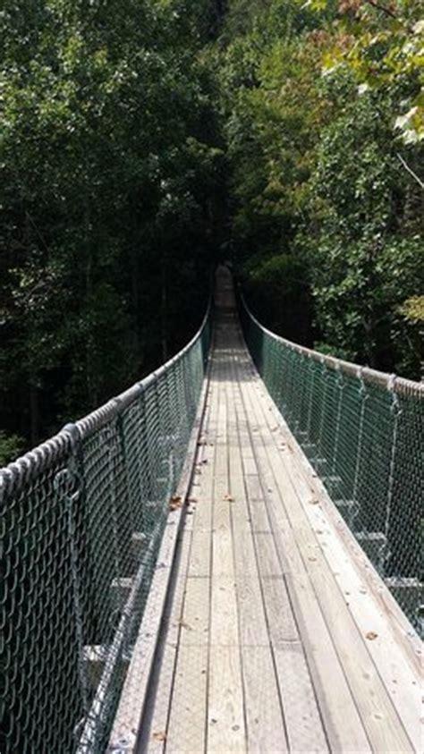 foxfire mountain swinging bridge longest swinging bridge in america picture of foxfire