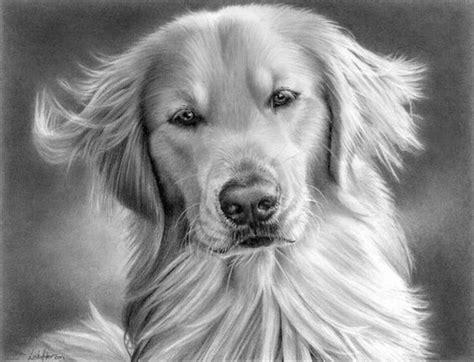 imagenes hechas a lapiz de animales 10 lindos dibujos a lapiz de perros imagenes de perros