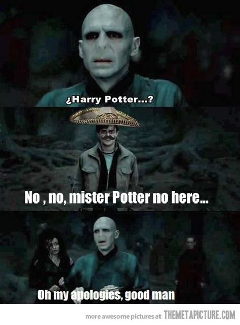 Funny Harry Potter Meme - harry potter funny harry potter funnies rosebloods