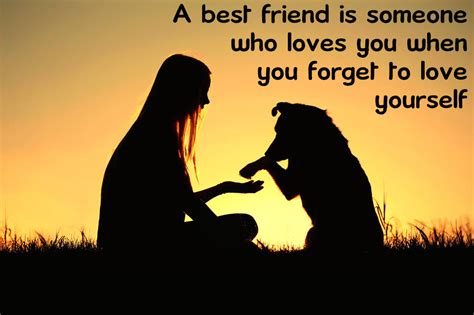 a best friend best friend quotes or quotes about