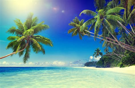 beaches travel leaders destinations unlimited
