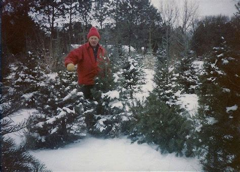 how nebraska s first choose and cut christmas tree farm