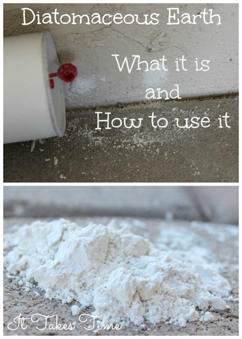 10 Uses For Diatomaceous Earth Diatomaceous Earth