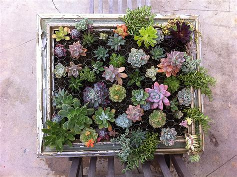Cactus Vertical Garden Armygurumi Amigurumis Y Otras Cosas De La Vida Jardin
