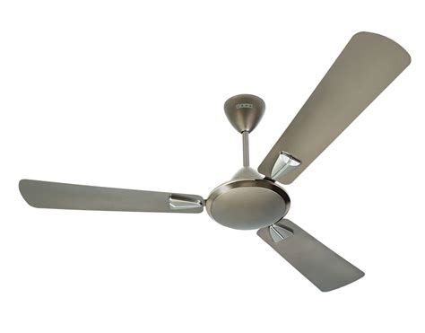 novelty ceiling fans buy usha striker galaxy silver at best price