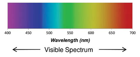 Wavelength Range Of Visible Light by Visible Spectrum