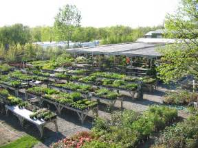 Landscape Supply Huntersville Nc Plant Nursery Nc Thenurseries