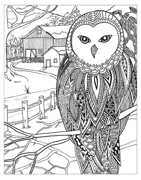 coloring pages winter wonderland 1185 best 214 adult colouring owls birds zentangles 214