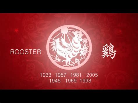 new year what does rooster year of the rooster 2016 horoscope