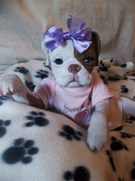 up dolls for dogs custom reborn puppy doll princess