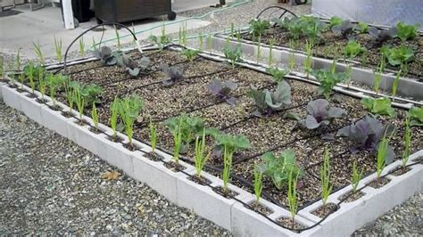 inexpensive raised garden bed ideas raised garden beds how to make inexpensive