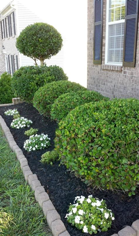 stunning black mulch landscaping ideas    page