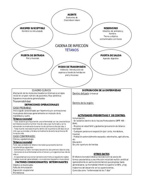 cadena epidemiologica gripe comun cadenas epidemiol 243 gicas de principales enfermedades