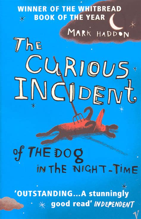 the curious incident of the in the nighttime wonderful novel the curious incident of the in the time being adapted into a