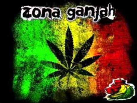 imagenes de leones de zona ganjah zona ganjah el leon ruje youtube