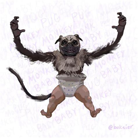 monkey and pug bo365 pug monkey baby you the real mvp pugs pugs pugs