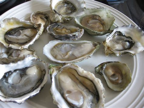 11 different types of oysters our tasting order flickr photo sharing