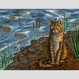 Warriors Cats Crookedstar   800 x 618 jpeg 386kB