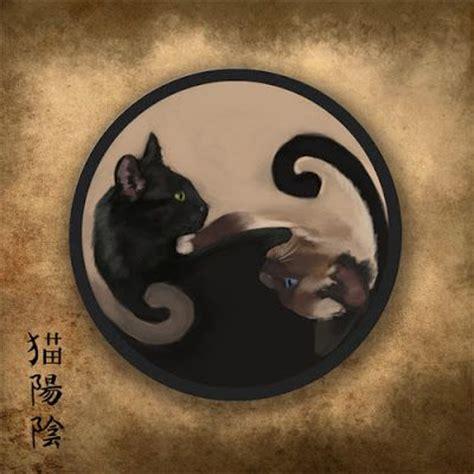 cat yin yang tattoo ying yang cats magical art pinterest