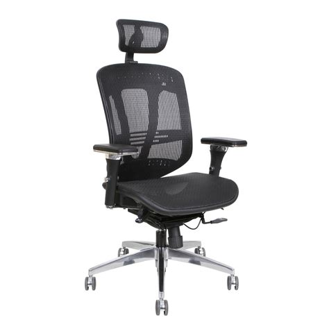 tenafly mesh desk chair thornton s ergoexec high back mesh executive swivel office