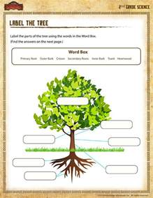 free science worksheets for 2nd grade abitlikethis