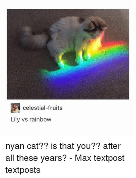Cat Rainbow Meme - 25 best memes about nyan cat nyan cat memes