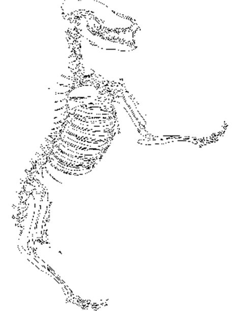 t rex fossil coloring page