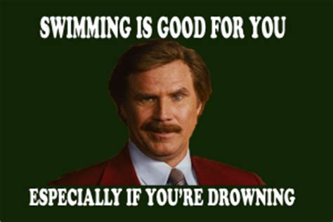 Good For You Meme - swimming is good for you funny meme desktop backgrounds