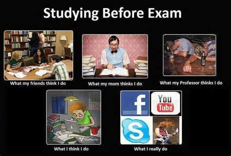Studying Memes - study tips from memes the summa
