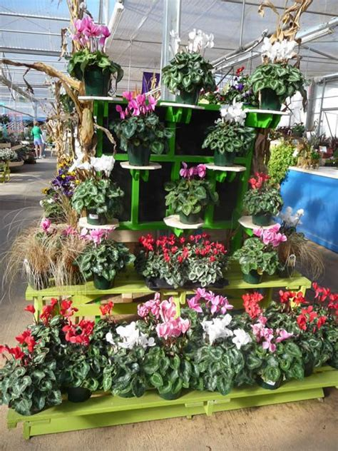 Garden Center Display Ideas 225 Best Images About Business On Pinterest Gardens Plant Sale And Nurseries
