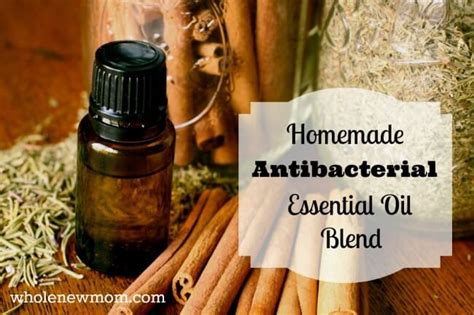 using thieves in your kitchen the oily home companion homemade antibacterial essential oils blend like thieves