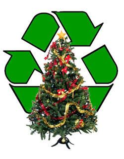 christmas tree recycling issaquah for tailed hawks krcu
