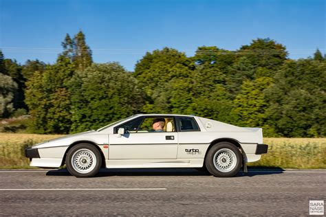 lotus for your only lotus turbo esprit for your only