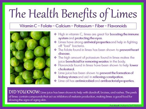 Lime And Lemon Water Detox Benefits by 8 Best Images About Lime On What Would